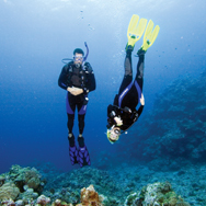 Be at ease in the water with PADI's Peak Performance Buoyancy Course